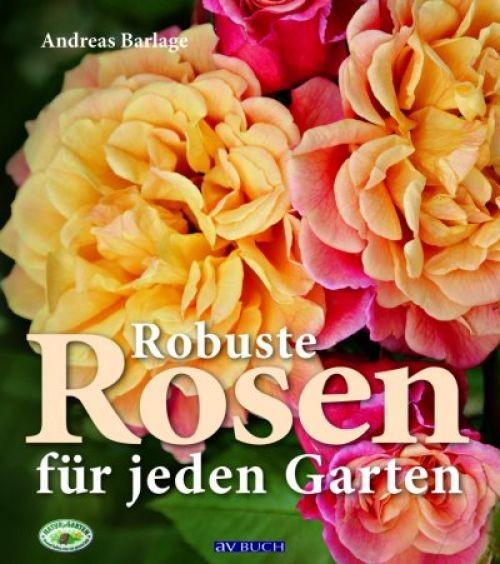 Robuste Rosen für jeden Garten