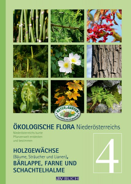 Ökologische Flora Niederösterreichs, Band 4